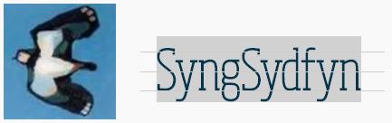 Syng Sydfyn
